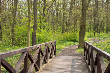 Woods bridge